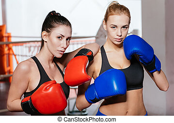 Strong sexy female boxers modeling - Hold that pose. Slim...
