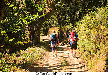 Pilgrimns along the way of St. James - GALICIA, SPAIN -...