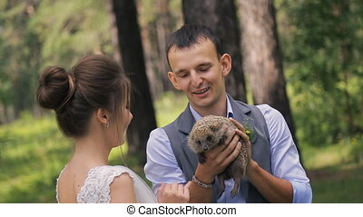 Man holds prickly hedgehog on wedding photosession outdoors....