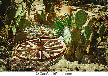 Wooden Wagon Wheel - Old Wooden Wagon Wheel among Cacti