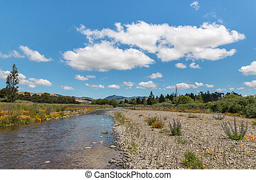 Taylor river in Blenheim, New Zealand - Taylor river with...