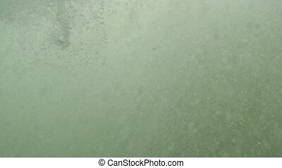 Ocean surface with drops and bubbles close-up view - White...