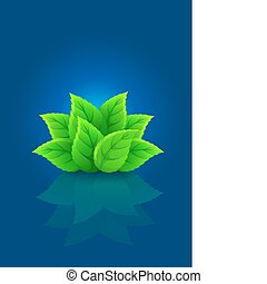 group of green leaf on blue background