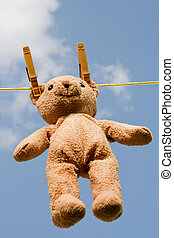 Teddy on a clothesline