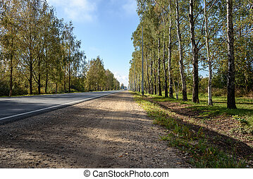 Paved road between green trees on blue sky background -...