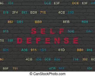 Privacy concept: Self Defense on wall background - Privacy...