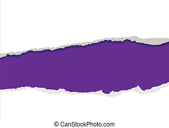 purple torn strip background