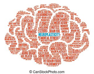 Neuroplasticity Brain Word Cloud - Neuroplasticity Brain...