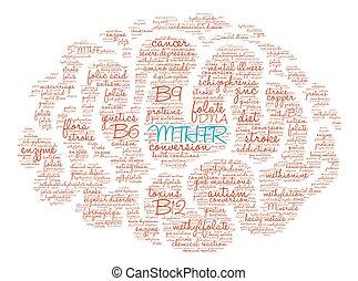 MTHFR Brain Word Cloud - MTHFR Brain word cloud on a white...