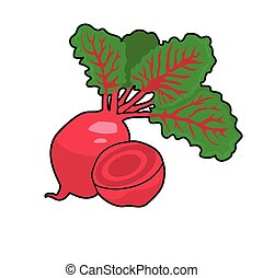 beet - Two maroon beets  on the white background