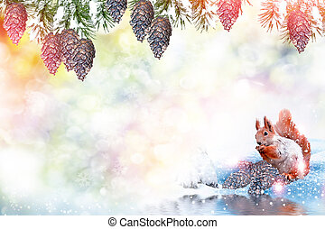 Snow covered trees. Squirrel in the winter forest.