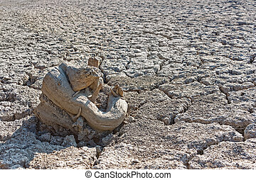 Dry tree root on the dried soil - Some dry tree root on the...