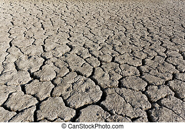 Cracked soil surface of dried lake - Grey cracked soil...
