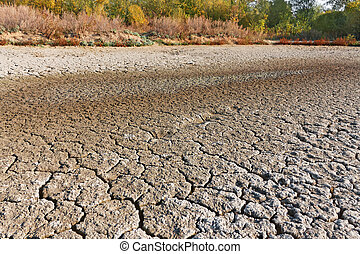 Drying up lake surface with exhausted vegetation on the...