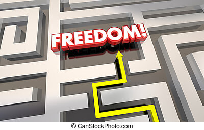 Freedom Liberation Get Out of Maze Arrow 3d Illustration