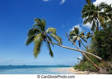 Shore of Makaha'a island near Tongatapu island in Tonga....