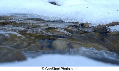 Winter frozen creek