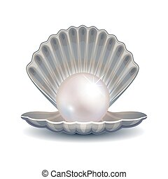 Pearl in shell vector illustration for fashion logo or poster