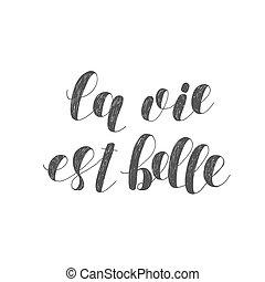 La vie est belle. Life is beautiful. Brush lettering...