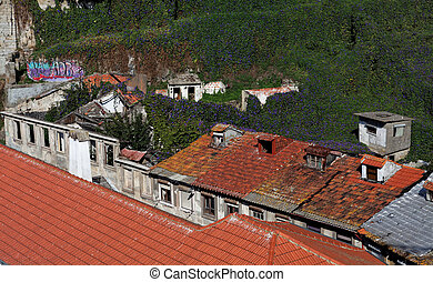 old houses in ruins overgrown with creepers, Porto ,...