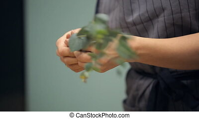 Human Hands pluck green leaves from the stems of plants....