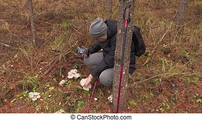 Man with tablet exploring mushrooms in the forest