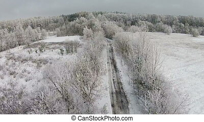 Aerial view of winter forest with road and snow on the trees
