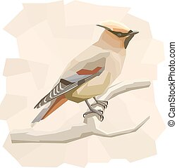 Vector simple illustration of waxwing bird. - Vector simple...