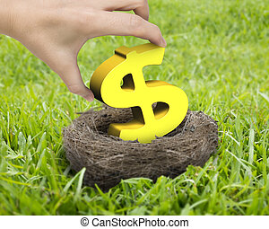 Woman hand holding golden dollar sign in nest on the meadow.