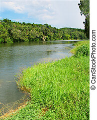 Barron River in Queensland - View of the mighty Barron River...
