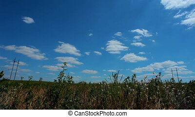 Natural landscape - The beautiful natural landscape with...