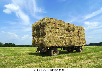 Bales of hay on a trailer standing in a green field under a...