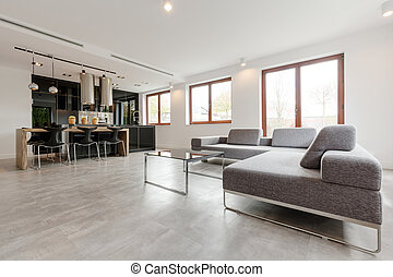 Stylish living room combined with kitchen - Shof of a...