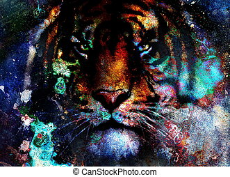 tiger collage on color abstract background, rust structure,...