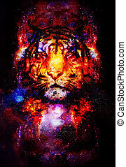 magical space tiger, multicolor computer graphic collage. -...