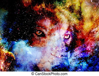 magical space wolf, multicolor computer graphic collage.