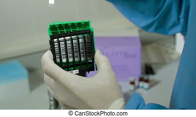 Doctor puts test tubes in a support for analysis - Doctor...