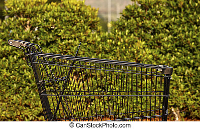 Empty shopping cart,