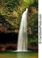 Lower Tavoro Waterfalls in Bouma National Heritage Park,...