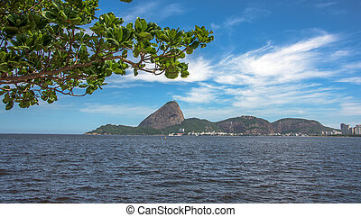 View of green tree and Guanabara Bay with Sugarloaf Mountain...