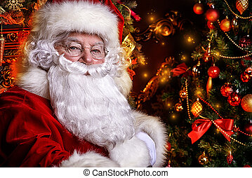 newyear magic - Christmas concept. Close-up portrait of a...