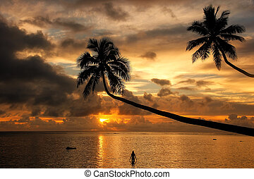 Silhouette of leaning palm trees and a woman at sunrise on Taveuni Island, Fiji