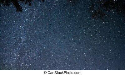 Many stars.