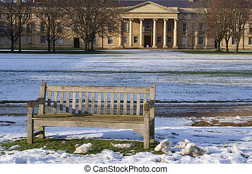 A bench on the lawn in Downing College Cambridge University