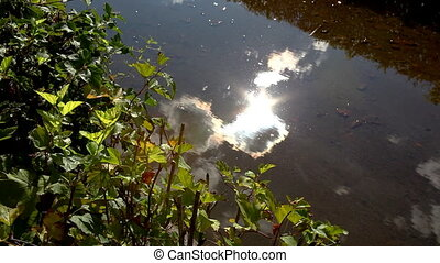 View on the glossy water with sun