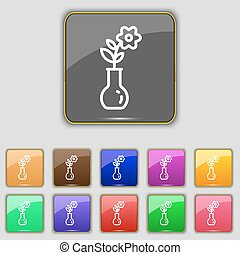 flower in vase icon sign. Set with eleven colored buttons...
