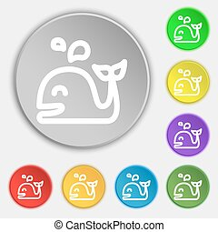 Whale icon sign. Symbol on eight flat buttons. Vector...