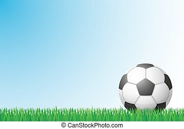 soccer grass field vector illustration isolated on...