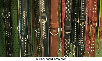 Dog leashes in a pet tool market - pet dog collar leash in a...