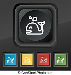 Whale icon symbol. Set of five colorful, stylish buttons on black texture for your design. Vector